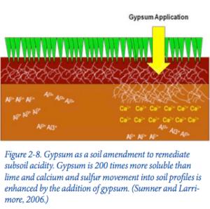 Gypsum as an Agricultural Amendment - Bulletin 945